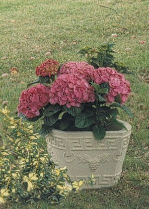 Kingsbury Stone Planter