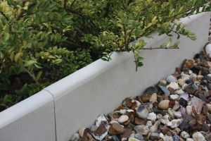 Global Stone - Bullnose Edgings - Mint - 560 x 140mm
