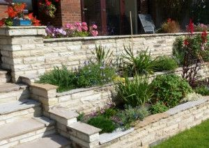 Natural Paving - Cottagestone - Copings - Golden Fossil