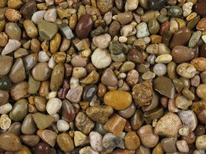 Pea Pebble - 20 to 40mm