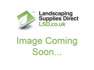 Indian Sandstone Paving - Mint Fossil - 900 x 600mm - Calibrated - Slab