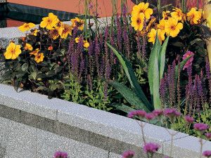 Stonemarket - Rio Walling - Grey - Coping