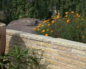 Strata Stones - Walling Coping - Raj - 560 x 150mm