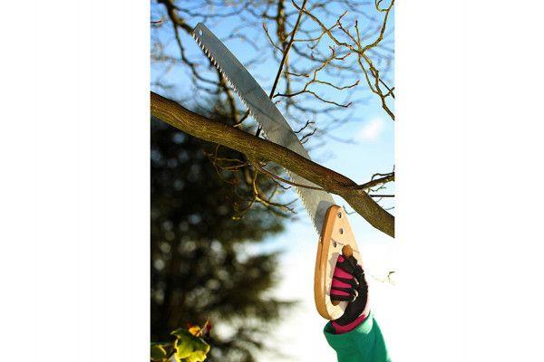 Kent & Stowe Pruning Saw 18in Blade