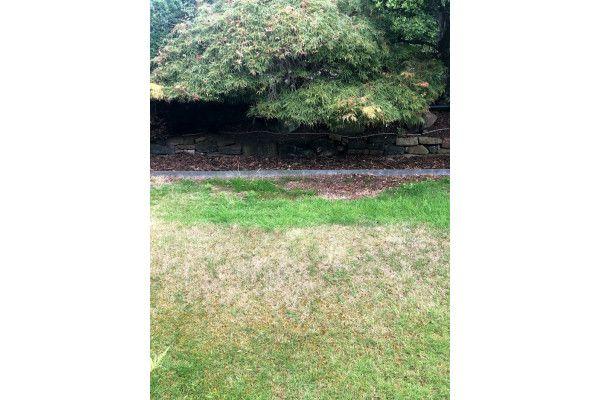 Multi-Edge - Metal Lawn Edging - 1000 x 175mm
