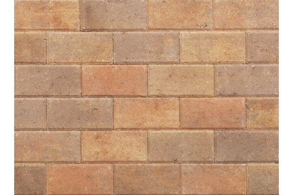 Stonemarket - Pavedrive Paviors - Forest Blend - 200 x 100 x 50mm