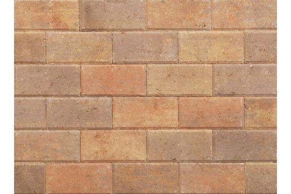 Stonemarket - Pavedrive Paviors - Forest Blend - 200 x 100 x 60mm